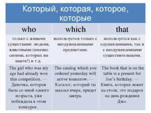 Which that who правило